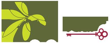 The Olive Vault Logo